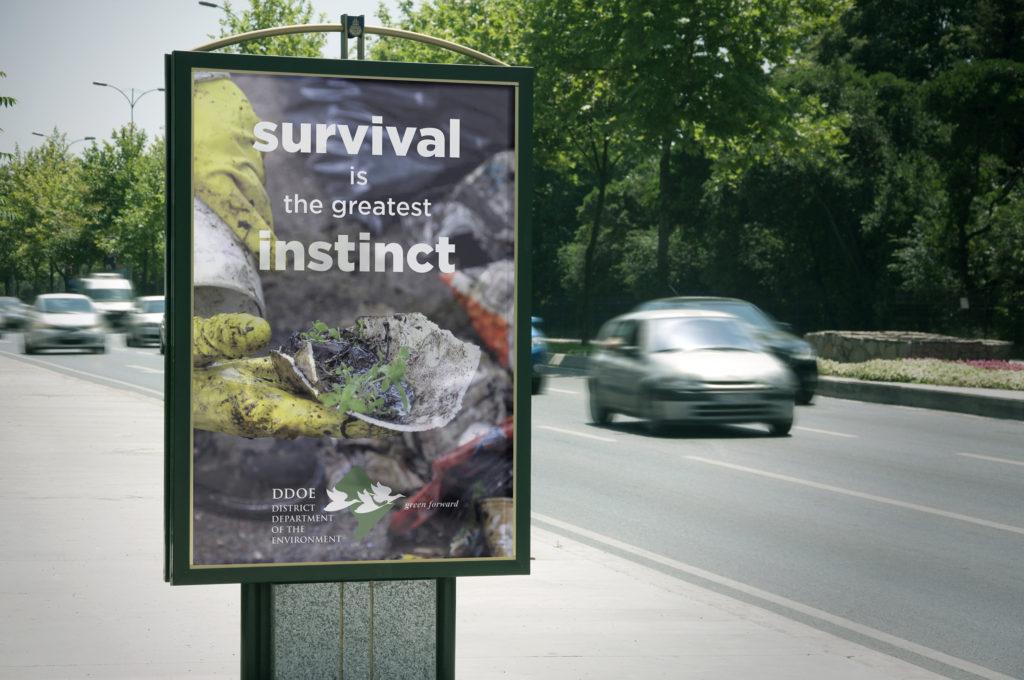 Survival6